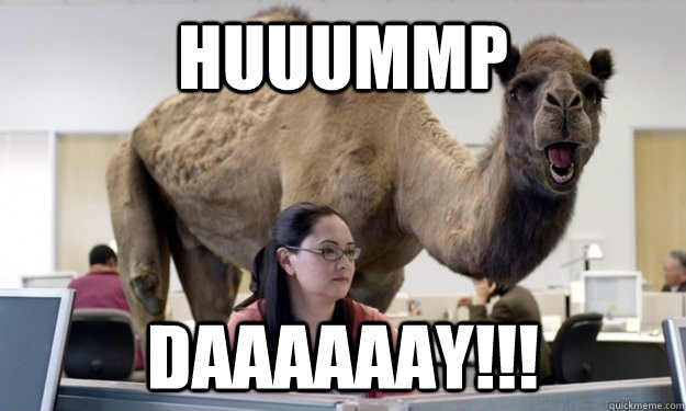 Guess what day it is???? HUMP DAY!
